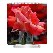 Fragmented Pink Rose Shower Curtain