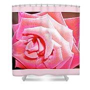 Fragrant Rose Shower Curtain