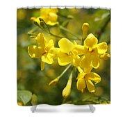 Fragrant Yellow Flowers Of Carolina Jasmine Shower Curtain