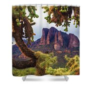 Framed By Cholla Shower Curtain