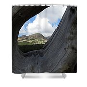 Framed In Wood Shower Curtain