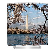 Framed With Blossoms Shower Curtain