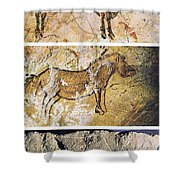 France And Spain: Cave Art Shower Curtain