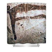 France: Mammoth Art Shower Curtain