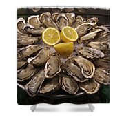 France, Paris Oysters On Display Shower Curtain
