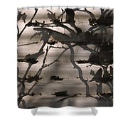 France, Paris, Tree Branches Reflected Shower Curtain
