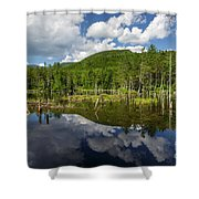 Franconia Brook Trail - Pemigewasset Wilderness New Hampshire Shower Curtain by Erin Paul Donovan