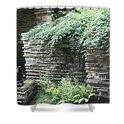 Frank Lloyd Wright Fw V Shower Curtain
