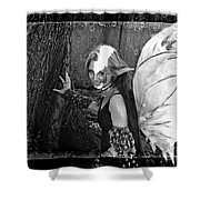 Freckled Fae II Shower Curtain