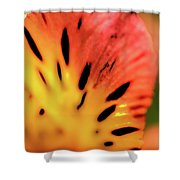 Freckled Shower Curtain