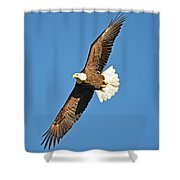 Free Flying Shower Curtain