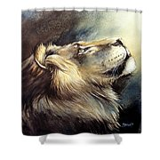 Free King Shower Curtain