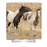 Free Life Shower Curtain