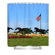 Freedom Dream Shower Curtain
