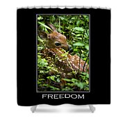 Freedom Inspirational Motivational Poster Art Shower Curtain by Christina Rollo