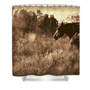 Freedom Run After Rescue Shower Curtain