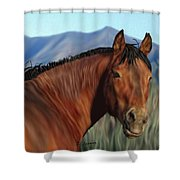Freedom's Glance Shower Curtain