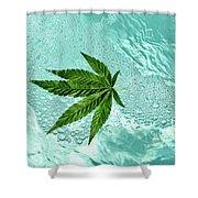 Freeeee Shower Curtain