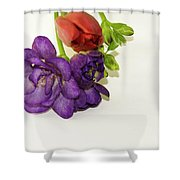 Freesia And Tulip Shower Curtain