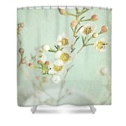Freesia Blossom Shower Curtain