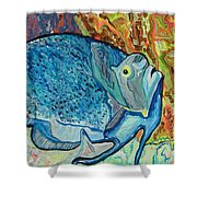 French Angle Fish Shower Curtain