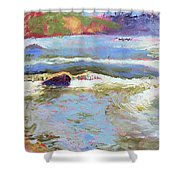 French Broad Rver Overflowing Shower Curtain