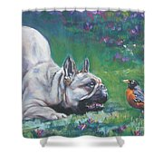 French Bulldog Meets Robin Redbreast Shower Curtain