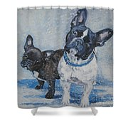 French Bulldog Mom And Pup Shower Curtain