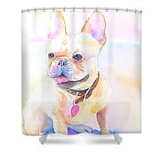 French Bulldog Watercolor Shower Curtain
