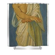 French Jacob Shower Curtain