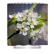 French Kisses Shower Curtain