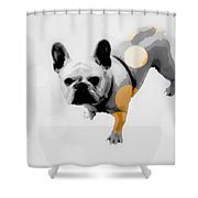 French Lights Shower Curtain