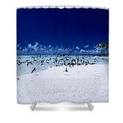 French Polynesia, Tetiaro Shower Curtain
