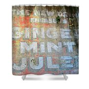 French Quarter 25 Shower Curtain