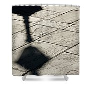 French Quarter Shadow Shower Curtain