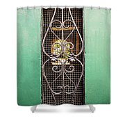 French Quarter Window To The Courtyard Shower Curtain