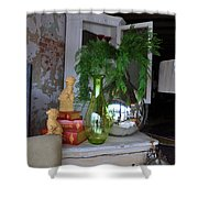 French Reflection Shower Curtain