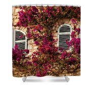 French Windows Shower Curtain