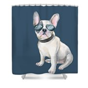 Frenchie French Bulldog Aviators Dogs In Clothes Shower Curtain