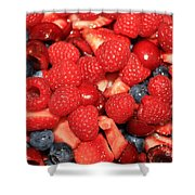 Fresh Berry Salad  Shower Curtain