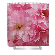 Fresh Blooms Shower Curtain