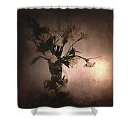 Fresh Bouquet Shower Curtain
