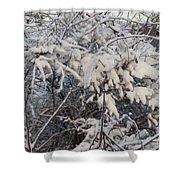 Fresh Coat Of Snow Shower Curtain