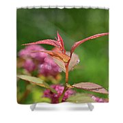 Fresh Colors Of Summer Shower Curtain