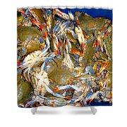 Fresh Crab In Market Shower Curtain