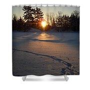 Fresh Deer Tracks At Sunrise Shower Curtain