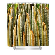 Fresh Fronds Shower Curtain