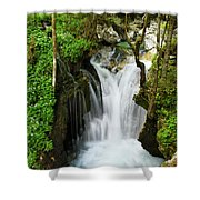 Fresh Green Forest In Spring At Lepenica River Gorge At Sunikov  Shower Curtain