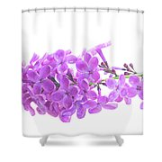 Fresh Lilac Shower Curtain