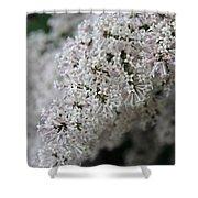 Fresh Lilac Perfume Shower Curtain